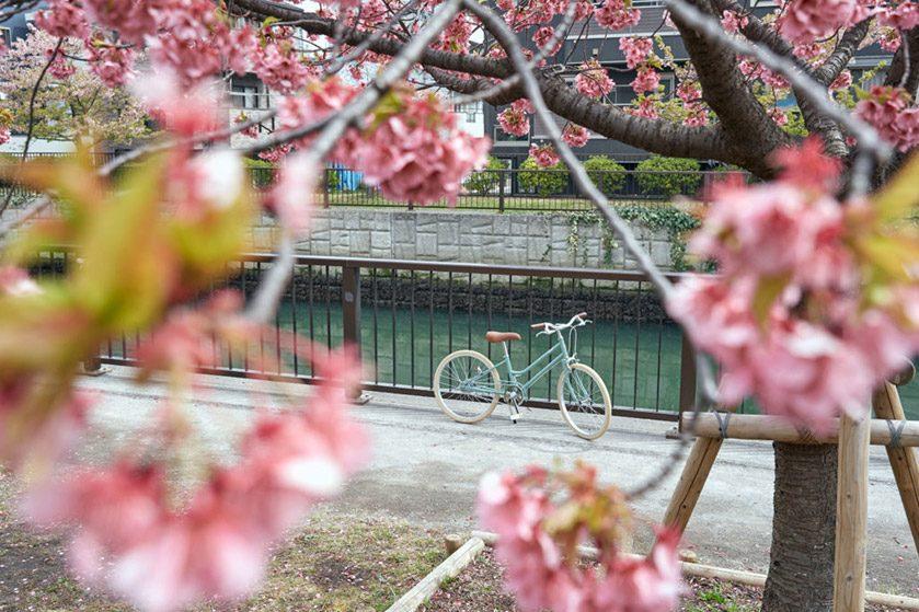 東京生まれ大人気シティサイクル『tokyobike』<br />待望ジュニアキッズサイズ新モデル2タイプ誕生