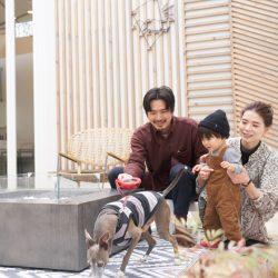 食材の宝庫・南房総千倉町で「海のグランピング」<br />夏休みは家族で『THE CHIKURA UMI BASE CAMP』へGO!!