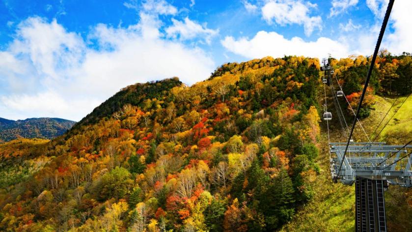 東京から2.5時間標高2000mのマウンテンリゾート。秋のお出かけは丸沼高原の大自然と絶叫アクティビティでリフレッシュ!